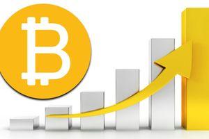 Giá Bitcoin hôm nay 14/10: Hơn 5.600 USD, dự đoán tiếp tục tăng cao