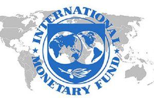IMF là gì, logo IMF có những gì?