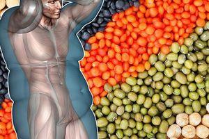 Những loại hạt nên bổ sung trong thực đơn giảm cân