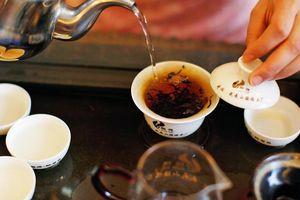 Loại trà đắt nhất thế giới có gì đặc biệt?