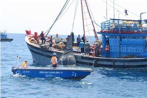 Quảng Bình: Xử phạt 2 tàu đánh bắt giã cào