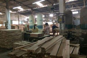 Bạt lối, mở đường xuất đồ gỗ