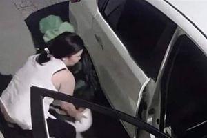 Camera ghi lại cảnh người phụ nữ đi ôtô trộm cây cảnh