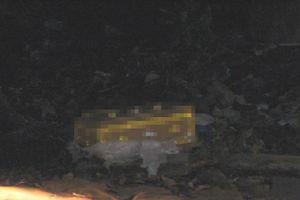 Hốt hoảng phát hiện thi thể thai nhi đang phân hủy ở bãi rác