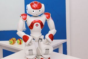 Top 10 robot giáo dục thông minh nhất thế giới có mặt tại Việt Nam