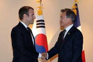 Pháp-Hàn nhất trí tăng cường quan hệ, phi hạt nhân hóa Triều Tiên