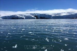 Băng ở Nam Cực đang tan nhanh hơn so với dự báo khoa học