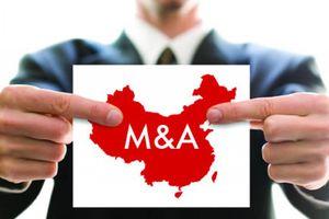 Châu Âu chống lại FDI của Trung Quốc như thế nào?
