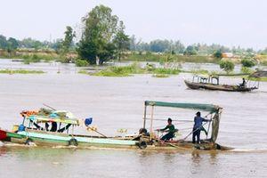 Cần kiên quyết xử lý ghe cào điện tận diệt cá đồng mùa nước nổi