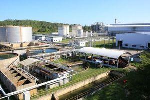 Sau 3 năm ngừng hoạt động, Nhà máy Nhiên liệu sinh học Dung Quất đã khởi động lại