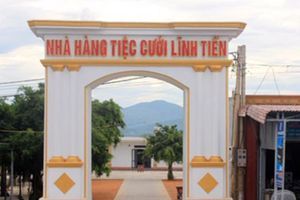 Chủ tịch huyện Quảng Trạch nói về nhà hàng lấp rừng phòng hộ