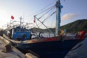 Cứu nạn thành công tàu cá cùng 17 ngư dân
