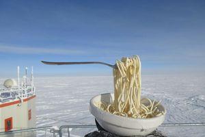 Điều gì sẽ xảy ra khi bạn nấu ăn ở Nam Cực?