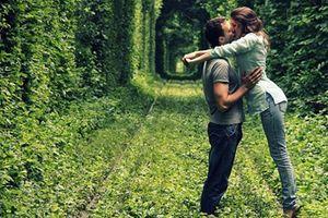 Những con đường tình yêu đẹp đến nao lòng