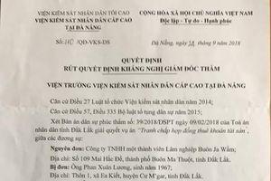 Giữ nguyên bản án phúc thẩm, thu hồi vườn cây từng giao cho ông Phan Xuân Lương