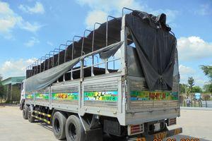 Xe tải kéo đổ giàn giáo hầm vượt sông Sài Gòn cơi nới thùng?