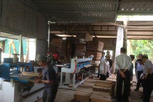 Nghiệm thu đề án: ' Hỗ trợ kinh phí đầu tư máy móc thiết bị tiến tiến trong sản xuất gỗ ván sàn tự nhiên '