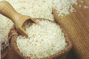 9 tháng đầu năm, xuất khẩu gạo nhiều nhất sang Trung Quốc