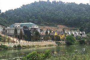 Hà Nội: Thanh tra toàn diện việc quản lý, sử dụng đất rừng tại Sóc Sơn