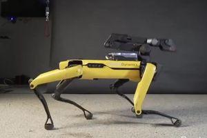Chó robot 4 chân nhảy theo điệu nhạc 'Uptown Funk' của Bruno Mars