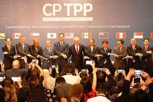 Australia thông qua CPTPP, gia tăng cơ hội chính thức có hiệu lực