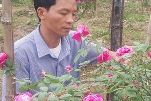 U40 Ninh Bình 'liều mạng' cầm cố nhà cửa vì phải lòng hoa hồng cổ