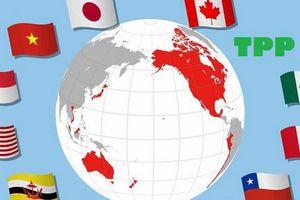 Australia thông qua TPP-11 để dọn đường cho TPP-11 có hiệu lực từ 2019