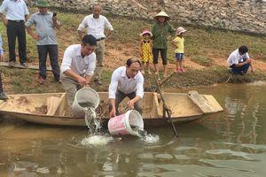 Thả 2 triệu con cá giống tái tạo nguồn thủy sản