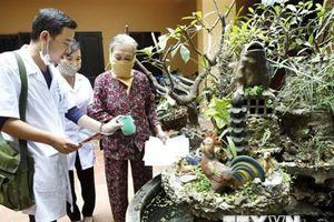 WHO chứng nhận Việt Nam loại trừ bệnh giun chỉ bạch huyết