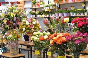 Giá hoa Đà Lạt tăng cao dịp 20-10