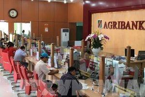 Agribank kết nối giao dịch điện tử với tất cả cơ quan hải quan