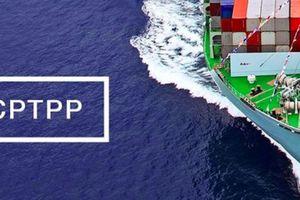 Australia phê chuẩn CPTPP bất chấp căng thẳng chính trị