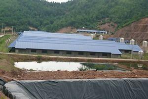 Gắn phát triển mô hình trang trại chăn nuôi với bảo vệ môi trường