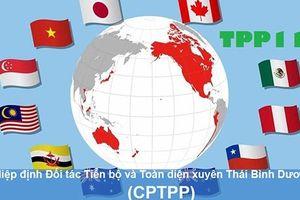 Thượng viện Australia thông qua Hiệp định CPTPP