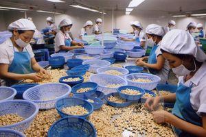 Để nông sản Việt vào thị trường khó tính
