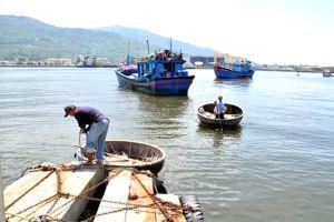 Dừng xây dựng tuyến luồng Thọ Quang (Đà Nẵng)