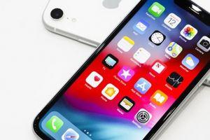 Tại sao nên chờ để mua iPhone Xr giá rẻ?