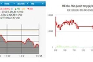 Cổ phiếu ngân hàng và dầu khí mất giá, VN-Index giảm hơn tám điểm
