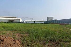 Tiền Giang thu hồi Dự án có vốn đầu tư 220 triệu USD vì nguy cơ gây ô nhiễm môi trường