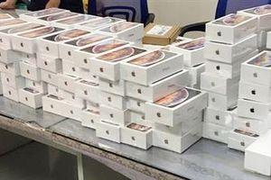 Chính phủ chỉ đạo xác minh vụ nhập khẩu hơn 1.100 iPhone Xs