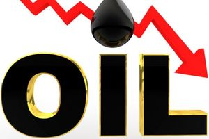 Giá dầu thế giới 18/10: Giá dầu giảm sốc sau thông tin dự trữ dầu Mỹ tăng