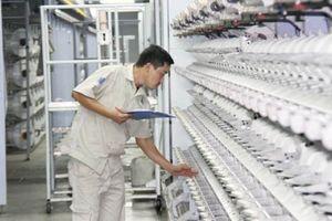 Nhà máy Xơ sợi Đình Vũ: Điểm sáng trong xử lý 12 dự án chưa hiệu quả ngành Công Thương