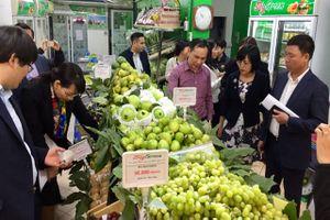 BẢN TIN TÀI CHÍNH-KINH DOANH: Xuất khẩu đạt kỷ lục, cơ hội phát triển ngành rau quả Việt