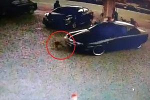 Mẹ bất cẩn trong lúc đổ xăng, con gái 2 tuổi bị ô tô đâm kéo lê nhiều mét