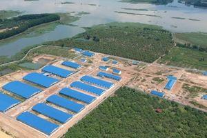 Đồng Nai: Sẽ tháo dỡ trại heo khổng lồ gần nguồn cấp nước sạch cho hơn 10 triệu dân