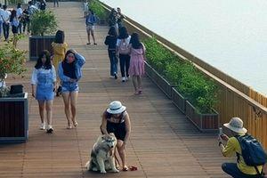 Cầu đi bộ lát gỗ lim 'siêu sang' ở Huế thu hút giới trẻ