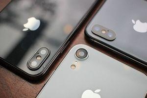 Apple bán chính thức bộ ba iPhone mới tại Việt Nam
