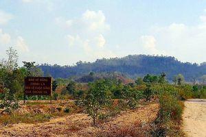 Ban Quản lý rừng khai gian, ăn chặn... hơn 5,3 tỉ đồng