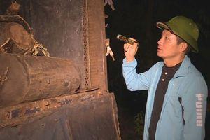 Giám đốc Công an tỉnh Đắk Lắk vi hành chỉ đạo bắt hàng loạt xe gỗ lậu