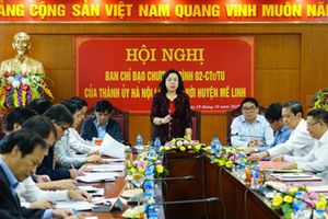 Huyện Mê Linh (Hà Nội): Tập trung xây dựng các chuỗi liên kết sản xuất nông nghiệp